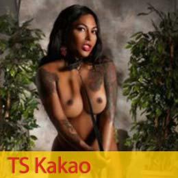 TS Kakao
